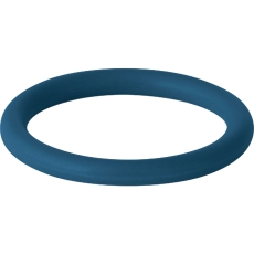 Geberit O-ring FPM, blå