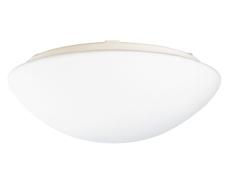Lampeglas til RS 14/DL 750S/RS PRO 500/RS 50