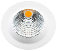 Downlight Jupiter Pro LED 25W 4000K 2040 lm, 40° Outdoor hvi